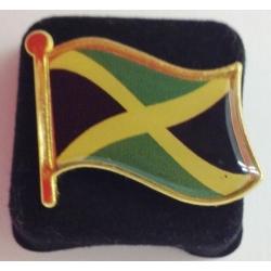 Jamaicaanse vlag  pin