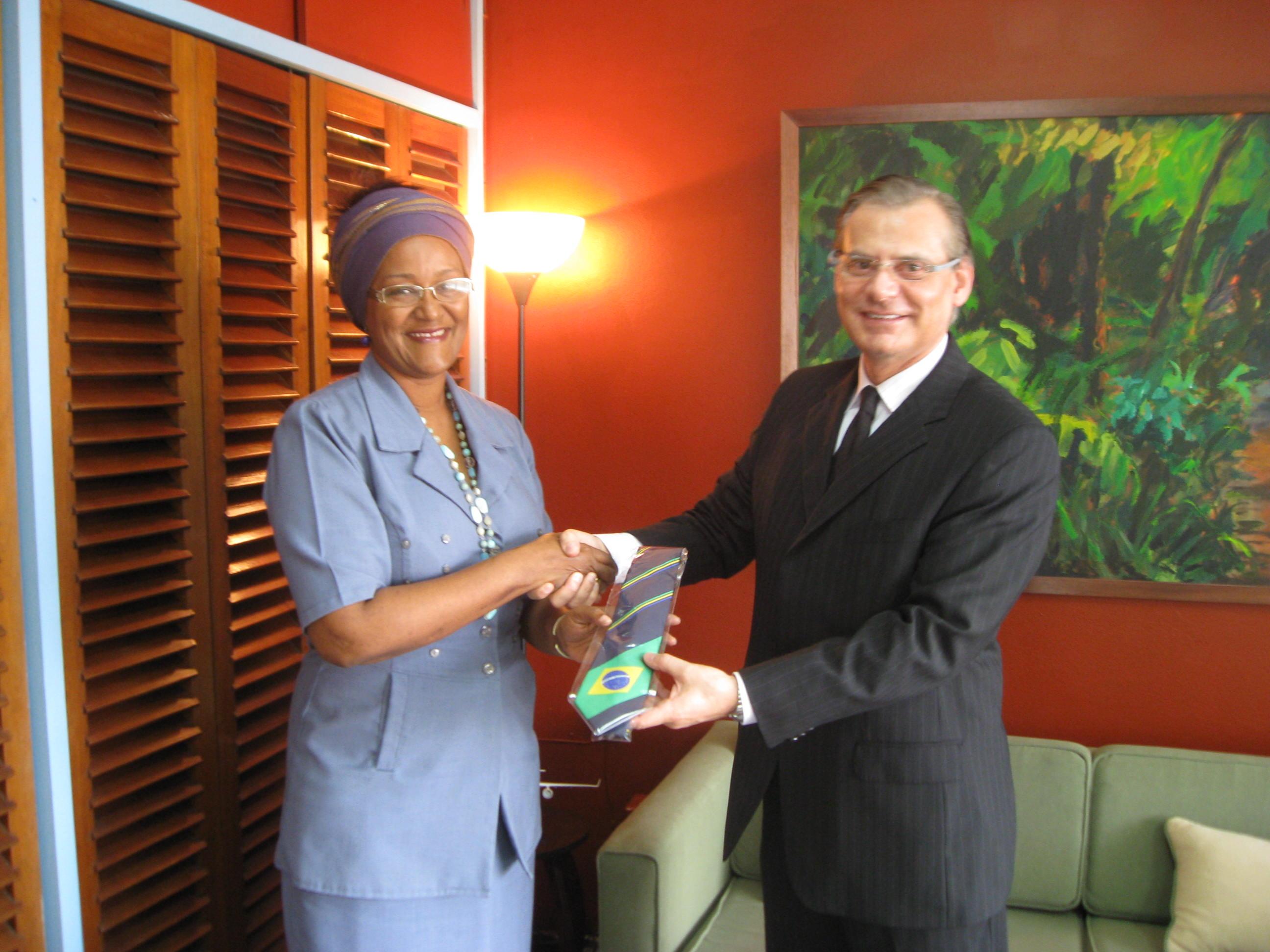 Overhandiging Braziliaanse Ambassadeur